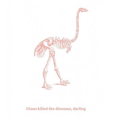 Postkaart Chaos